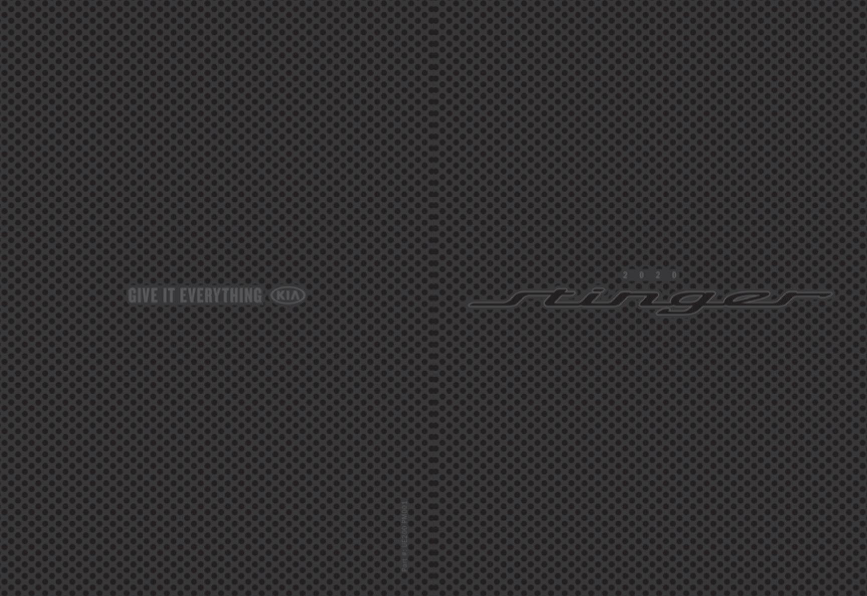 2021-2020 Stinger Brochure.pdf | PDF Host